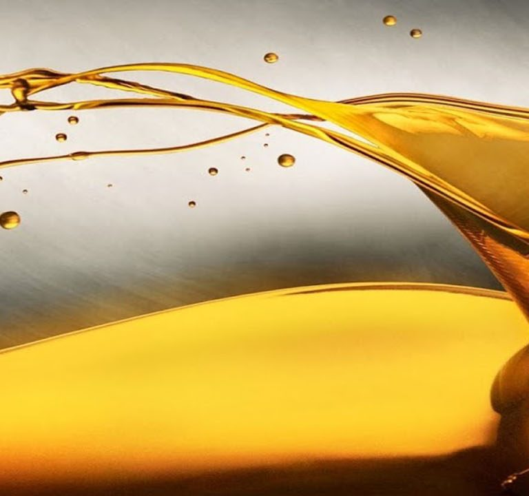 Edible Oil Sector